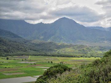 Kauai Countryside