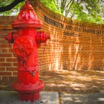 Lexington Hydrant