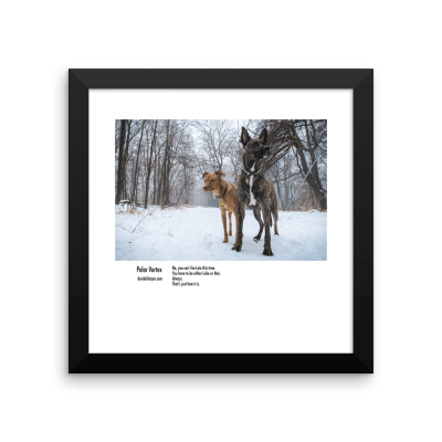5-polarvortex_10x10_framed