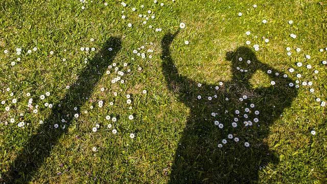 Selfie musical como recurso de social media marketing: los ganadores