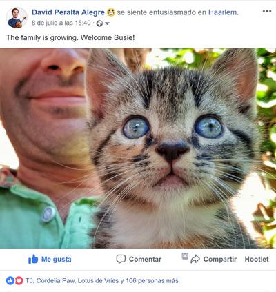 Mensaje personal en mi perfil de Facebook