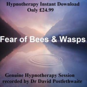 Fear of Bees and Wasps Hypnotherapy