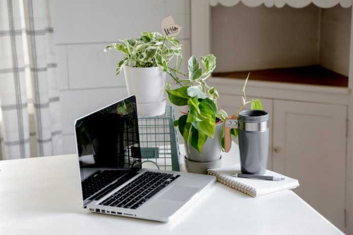 Use Plants in the Workspace