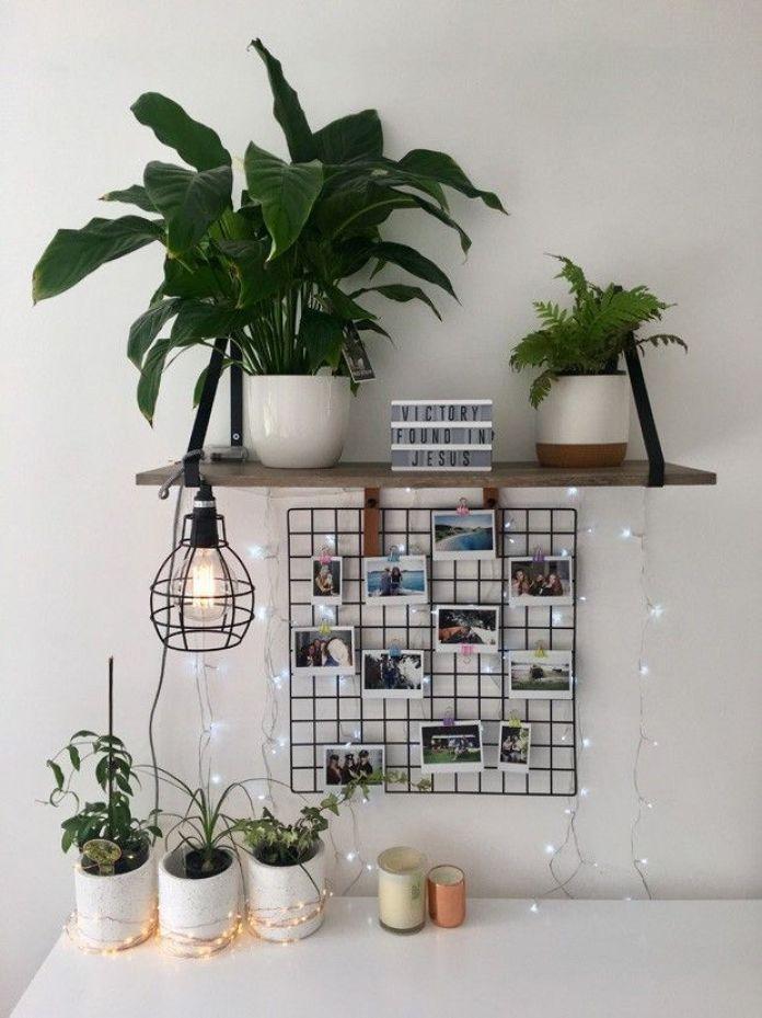 Add Some Ornamental Plants