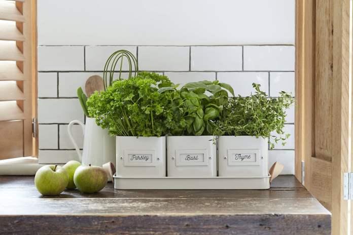 Mini Garden Using Pots