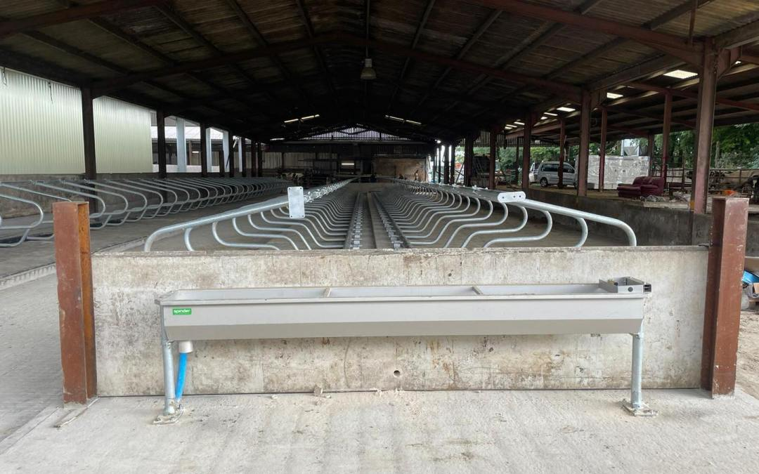 Supplied & Installed: Cosmos Cubicles, Meadow Mattresses & Stainless Water Troughs