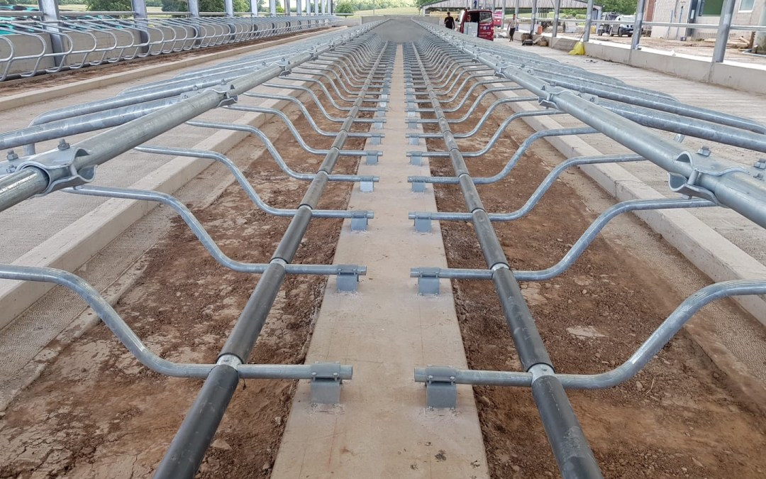 New Installation 210 cosmos cubicles for sand beds: