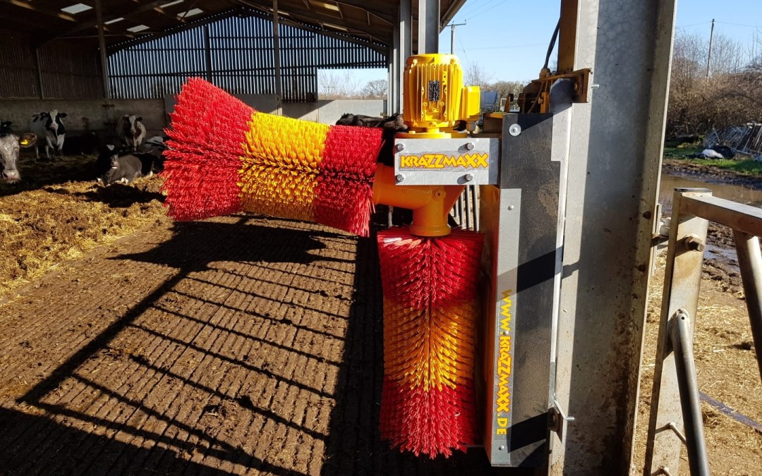 Cow Brush Installation