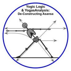 Yogic Logic & YogasAnalysis - Triangle & Lines of Energy for Yoga Therapy: medical massage, structural bodywork, yoga therapy