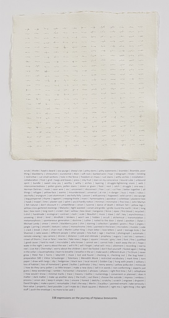 """338 expressions on the journey of Hylaeus brevicornis"" - abstract drawing with text by David Smith"