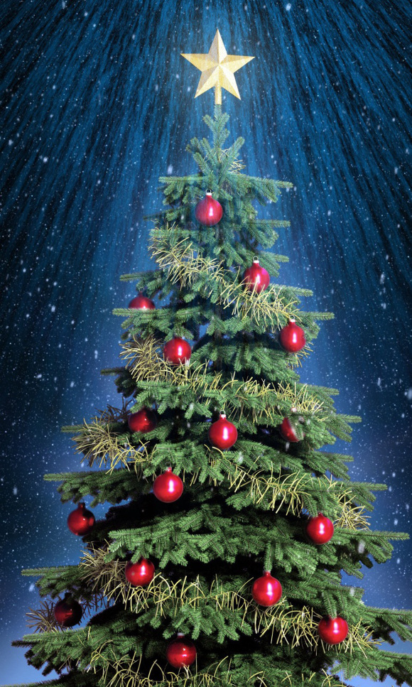 why is there a star on top of my christmas tree davidspellcom - Classic Christmas Trees