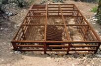 Once a mine shaft, now a habitat for bats.