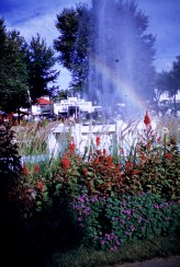 Minnesota State Fair - Fountain