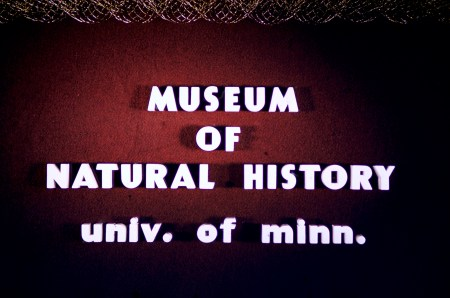 Museum of Natural History, University of Minnesota - Museum of Natural History - University of Minnesota