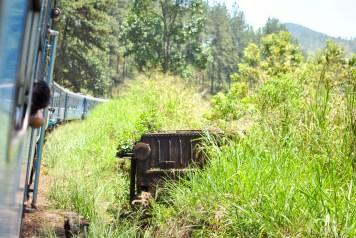 Train Kandy to Nuwara Eliya-10