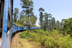 Train Kandy to Nuwara Eliya-28