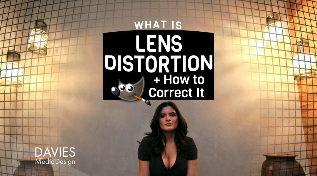 What is Lens Distortion and How to Correct It GIMP Help article