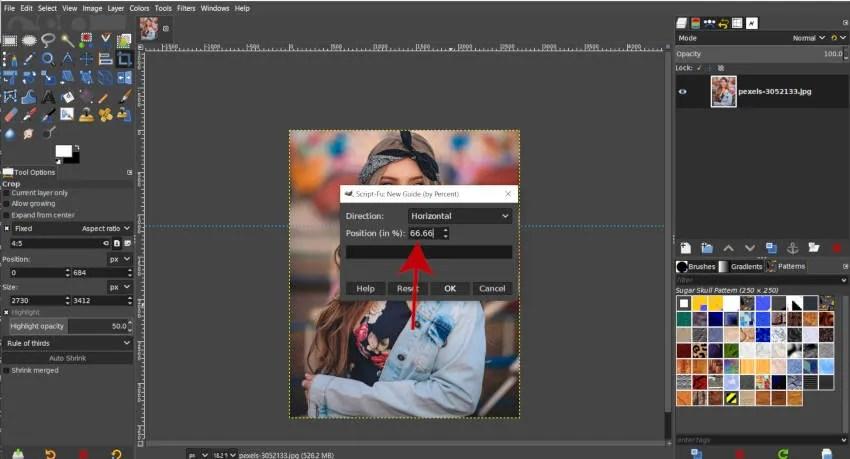 Nouveau guide horizontal 66 pour cent GIMP