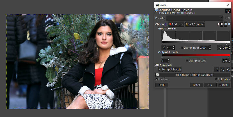 GIMP levels Tool Red Channel color Adjustment