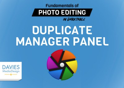 Lecture 13: Duplicate Manager Panel