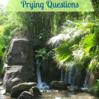 How to Politely Impede Prying Questions