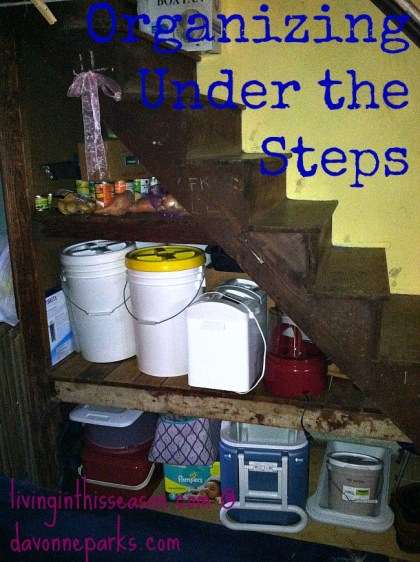 Under-the-Stairs