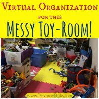 Virtual Organization for a Messy Toy Room