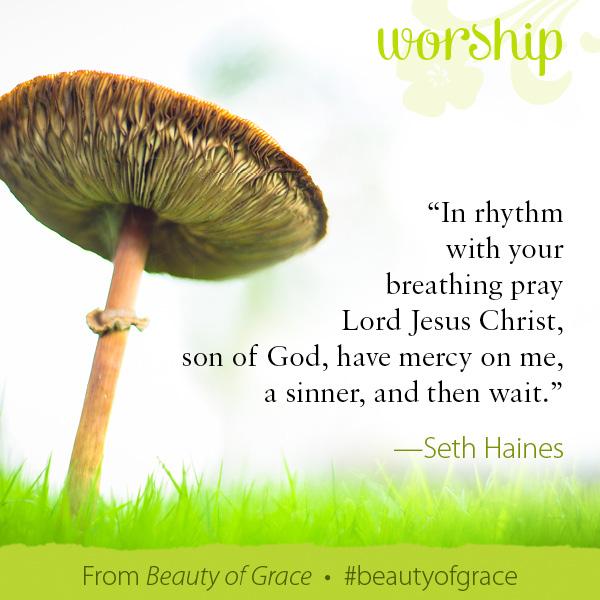 Seth Haines The Beauty of Grace #beautyofgrace