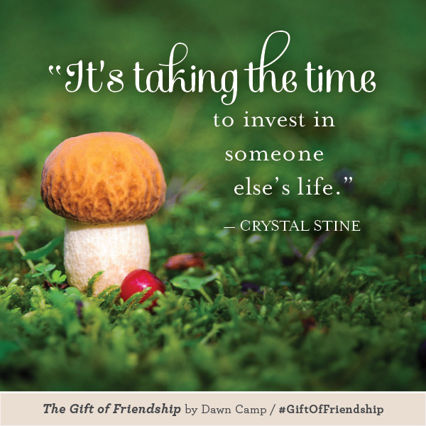 Crystal Stine The Gift of Friendship #GiftofFriendship