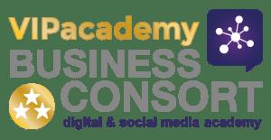 VIPacademy-BusinessConsort-product-logo-01 (1)
