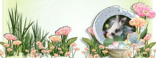 Happy Spring FB DP-002