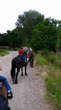 Horseback TITPHP