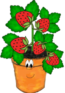 character-education-fruit