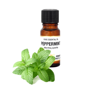 Amphora Peppermint Pure Essential Oil