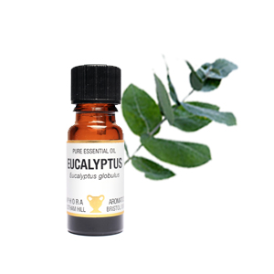 EUCALYPTUS PURE ESSENTIAL OIL; 10ML IN AN AMBER GLASS DROPPER BOTTLE BY AMPHORA AROMATICS