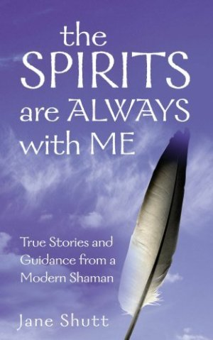 The Spirits Are Always With Me True Stories and Guidance From A Modern Shaman Paperback – 1 May 2003