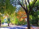 autumn18