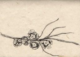 Ink on Handmade paper