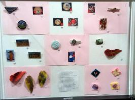 Display case showing my brooches