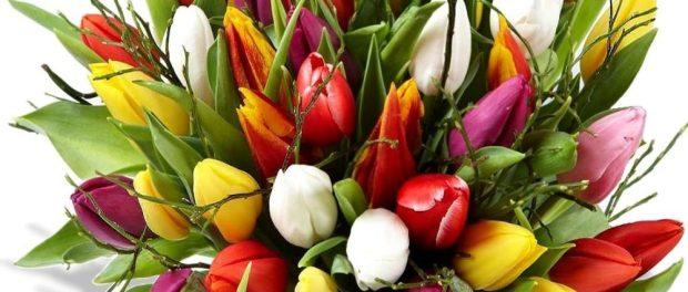 Mit einem Blumenstrauß und einem kostenfreien Lottoschein sagen wir danke! Foto: PR
