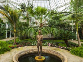 Skulptur von Malgorzata Chodakowska im Pillnitzer Palmenhaus Foto: Silvio Dittrich