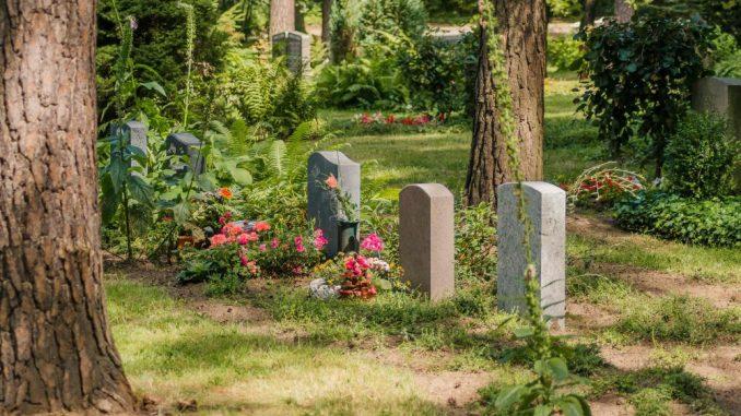 Partnergräber im grünen Band. Foto: Eigenbetrieb Städtisches Friedhofs- und Bestattungswesen