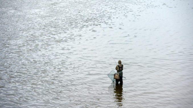 Ein Angler steht in einem Gewässer. Foto: Arno Burgi/Archiv