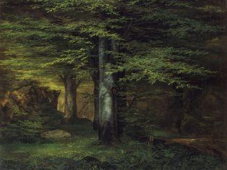 Ernst Ferdinand Oehme, Waldinneres, 1822, Öl auf Leinwand; 40 x 47,5 cm, Galerie Neue Meister, Copyright: SKD, Foto: Jürgen Karpinski