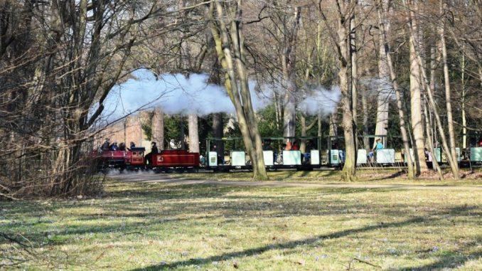 Parkeisenbahn im Großen Garten, Damplok (Foto: Juliane Zönnchen)