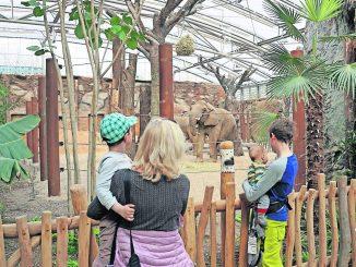 ZOOgeflüster: Das neue Afrikahaus im Zoo Dresden wurde im April 2018 eröffnet und begrüßt seine Bewohner sowie erste Besucher. (Foto: Zoo Dresden)