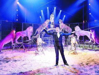 Eine wahrhaft tierische Sensation mit Tom Dieck und seinen Raubtieren. Foto: Circus Probst