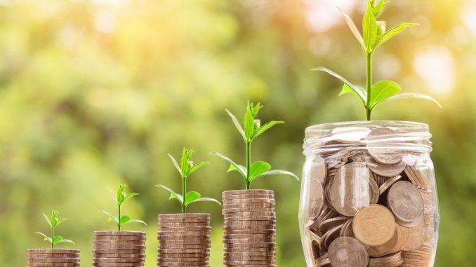 Damit aus Schulden wieder eine zarte Pflanze wachsen kann, helfen Schuldnerberater weiter. Foto: Pixabay