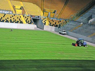 """Kein """"englischer"""" Rasen, sondern einer aus Mecklenburg liegt jetzt im DDV-Stadion."""