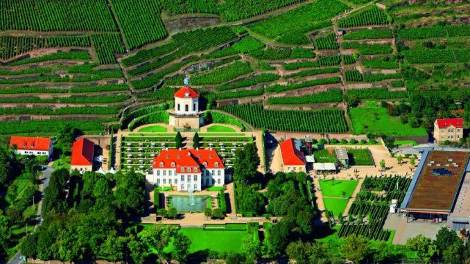 Schloss Wackerbarth lädt zum Tag des offenen Weingutes. Foto: PR